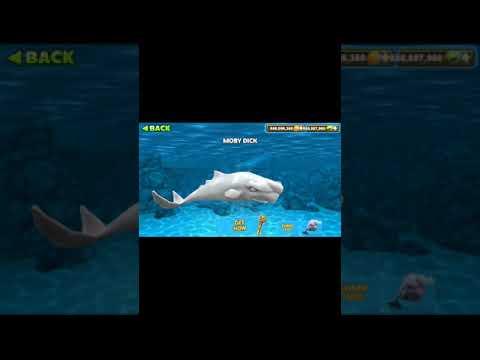 Mình hack hungry shark