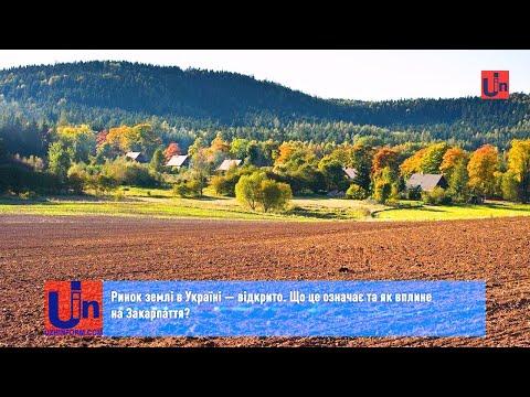 Ринок землі в Україні — відкрито. Що це означає та як вплине на Закарпаття?