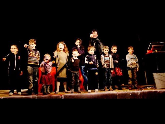 Magicien : Ecole des Sorciers: Un spectacle de magie pour votre arbre de Noël