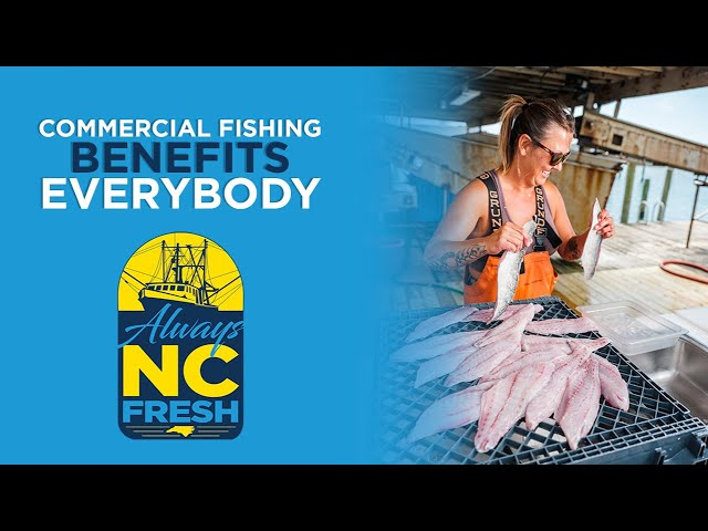 Commercial Fishing Benefits Everybody