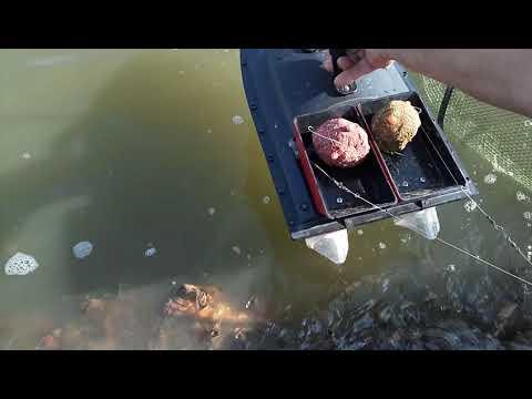 Рыбалка с корабликом Flaytec 2011-5 после доводки.