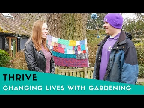 Thrive - The Incredible Charity Changing Lives Daily