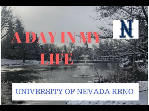 DAY IN MY LIFE AT UNR~ Carli Wharton