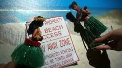 Texas Open Beaches Act - Prop 9