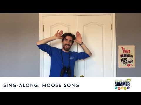 Children's - Sing-Along - Moose Song