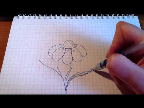 Как нарисовать травянистое растение