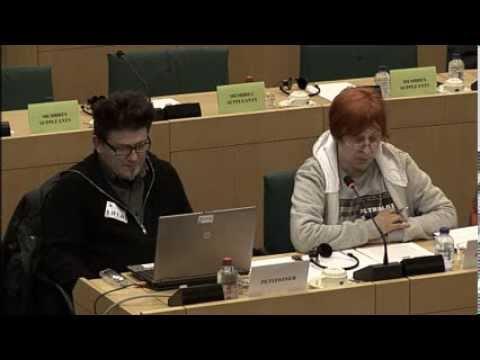 Anna Kleszcz PETI Committee EU Parliament 2014