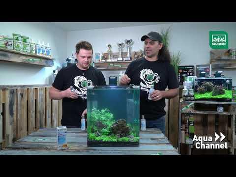 Aquarium Starter Rapid | DENNERLE