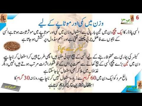 Health benefits of Flax Seeds in hindi urdu alsi seeds ...