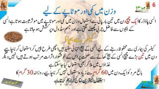 Health benefits of Flax Seeds in hindi urdu alsi seeds benefits in hindi urdu alsi ke beej