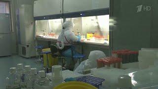 В США тиражируют слухи, что коронавирус якобы создан искусственно в китайской лаборатории.
