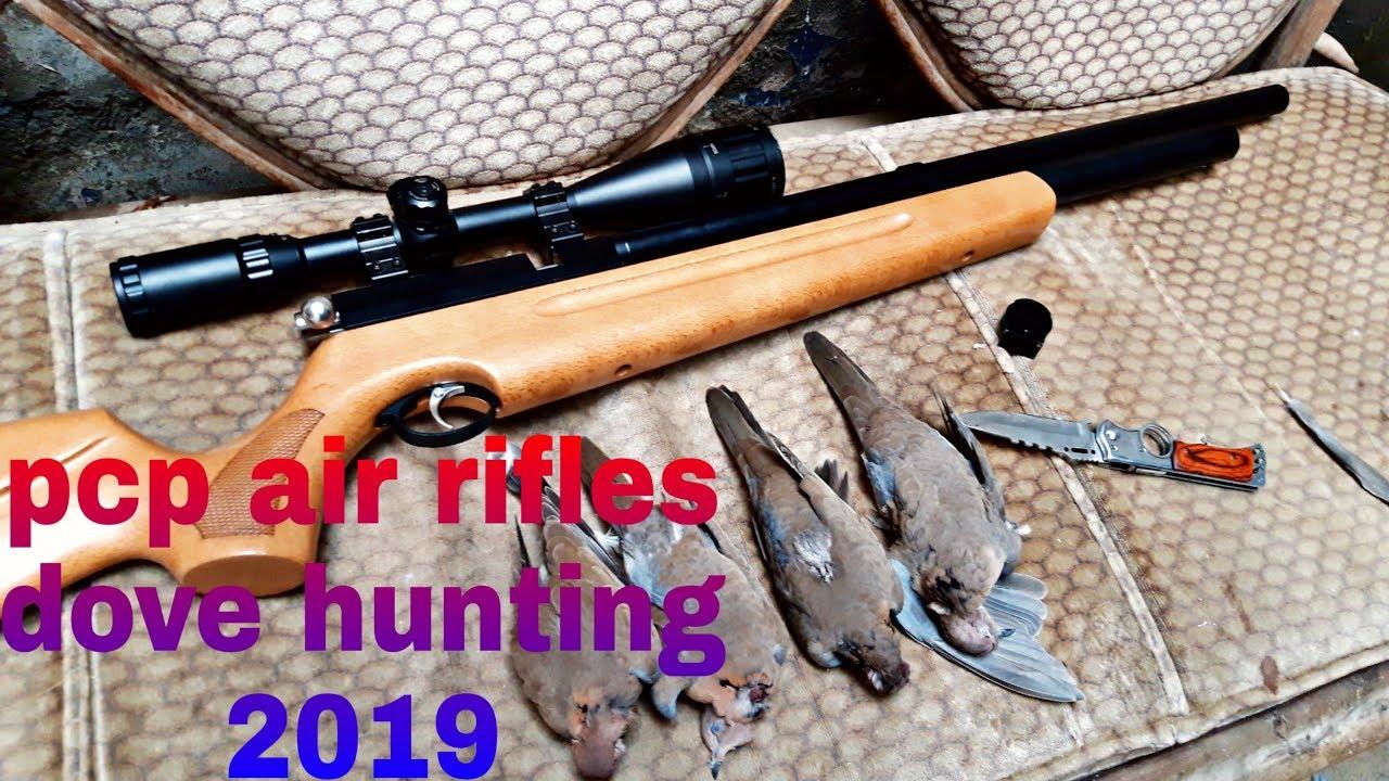 Pcp air rifles dove hunting 2019 by AJ Air rifle group