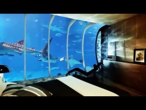 فندق تحت الماء   الغرف من الداخل كيف ستكون       YouTube