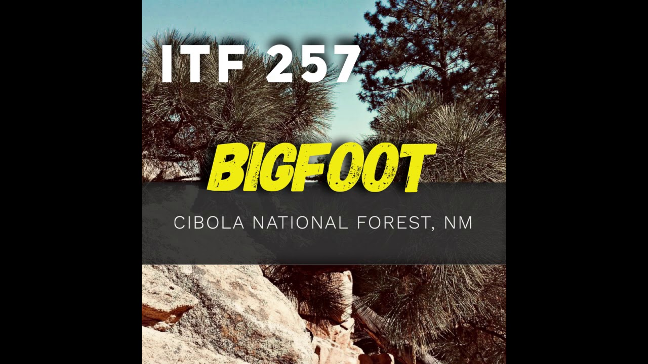iTF 257: Bigfoot-Cibola National Forest, NM