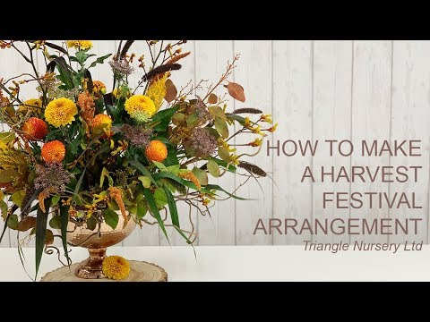 How To Make A Harvest Festival Arrangement (Live) - Wholesale Flowers Direct