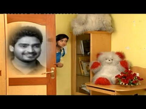 Varudhini Parinayam - Indian Telugu Story - Zee Telugu TV Story - Song