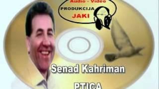 Senad Kahriman PTICA