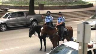 Полиция в седле