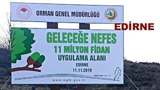 Geleceğe Nefes Kampanyası Edirne - 11 Milyon Fidan 11.11.2019