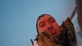 Охота на гуся 2017 Татарстан
