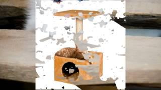 домик для кошки самара