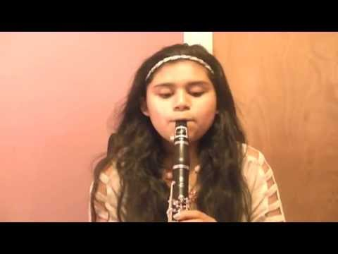 22-Taylor Swift (Clarinet Cover)