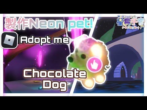 Roblox:收養我吧!Adopt Me! 將4隻Full Grown寵合成一隻Neon Pet!會是什麼樣子呢?