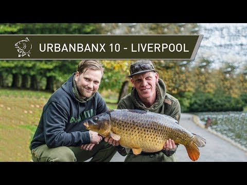 CARP FISHING Urban Banx 10 - LIVERPOOL