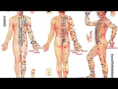 Bajar de peso con biomagnetismo medico