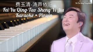 费玉清-涛声依旧/ Fei Yu Qing-Tao Sheng Yi Jiu/ Karaoke-Pinyin