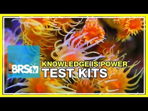 Week 34: Reefparameters: Our favorite test kits explained | 52 Weeks of Reefing #BRS160