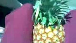 pineapple sex. Thumbnail