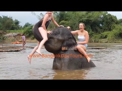 elephant-bathing-tour-with-bangkok-day-tours!