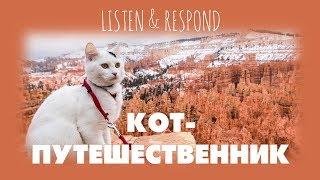 Intermediate Russian. Listen & Respond: Кот-путешественник