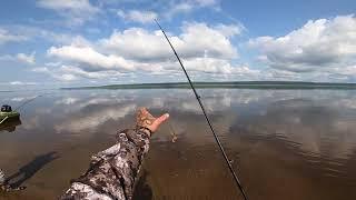 Рыбалка.Бешеный клёв 2020 (часть первая..)