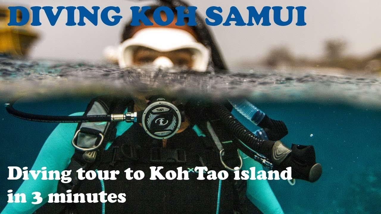 Diving Koh Samui - One-day dive trip to Koh Tao Island