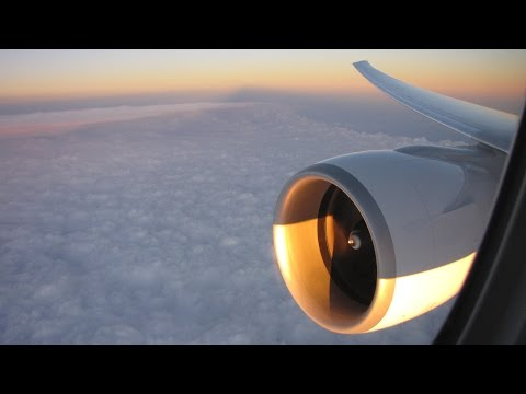 [Flight Report] AIR AUSTRAL | St Denis ✈ Paris | Boeing 777-300ER | Premium Eco