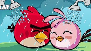 Angry Birds Take A Shower 2 - STEALING SHOWER FOR ALL BIRDS FROM BAD PIGGIES FULL!