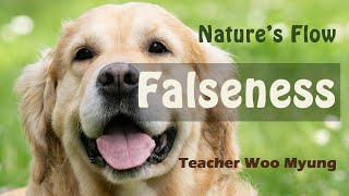 'Falseness' from Nature's Flow by Teacher Woo Myung  #meditation #guidedmeditation #woomyung