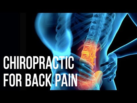 Back Pain Chiropractic Adjustment | 3 Reasons Why Chiropractic Care is Excellent For You