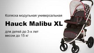 Hauck Malibu XL универсальная коляска(, 2016-02-22T01:33:43.000Z)
