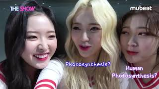 Behind The Show LOONA Self Cam