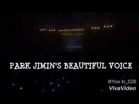 BTS Park Jimin's Beautiful Voice ( high notes, adlib, etc )