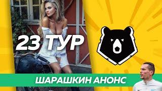 ВСЕ ВЕРНУЛИСЬ! АНОНС 23 ТУРА // Шарашкин спорт