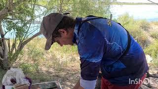 1 ЧАСТЬ Выезд на рыбалку с подписчиком МИАЛЫ сазан белый амур и др