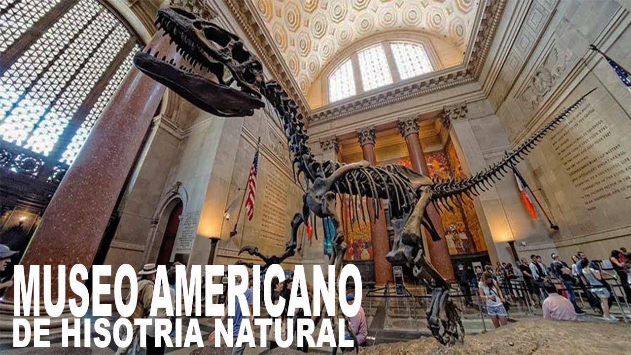 Que Recorrer En Nueva York Museo Americano De Historia Natural Youtube