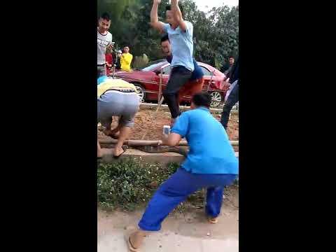 Rắn hổ mang chúa xuất hiện tại KCN Phú Hà