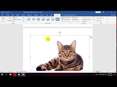 How To Insert An Online Picture In Microsoft Word