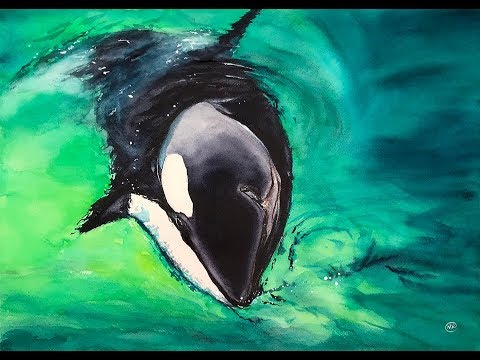 Watercolor Killer Whale Painting Tutorial