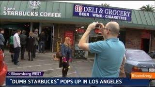 Repeat youtube video Dumb Starbucks All Dumb, Free Inside: On the Scene